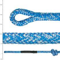 Argiope Blue